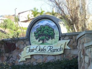 Top Things to do in Fair Oaks, Limo, Limousine, Charter, Shuttle, Birthday, Bachelor, Bachelorette, Prom, Homecoming, Nightlife, Sports, Tours